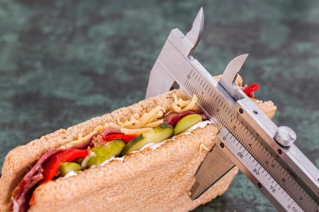 Is Obesity Culprit behind Health Issues you face? » Cheif